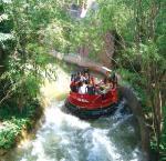 Canyon Drift Kids Amusement Rides Equipment 600kw For Theme Park Manufactures