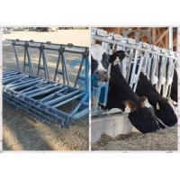 Durable  Feeding Equipment Headlock Fence Manufactures
