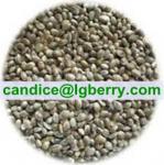 Hulled Hemp Seeds Manufactures