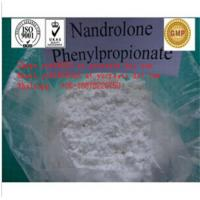 Nandrolone phenylpropionate CAS NO.: 62-90-8  High-quality safe clearance Any question, contact with Ada Skype ycwlb010