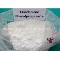 Safe Gain Muscle Fat Loss Steroids , Npp Steroid Deca Durabolin Oral CAS 62-90-8 Manufactures