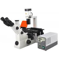 Inverted and Reflected Video Fluorescent Biological Microscopes with Trinocular Head Manufactures