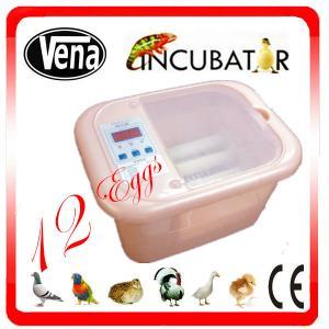Full automatic 12 Egg Incubator for quail eggs Manufactures