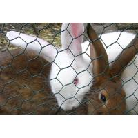 Metallic Rabbit Wire Netting , Hot - Dip Galvanized Wire Mesh Fencing Manufactures