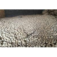 Ultra High Hardness Refractory Balls Non Ferrous Metal Industry 2.3g/Cm3 Manufactures