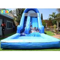 Large Outdoor Backyard Blow Up Water Slide For Adults Environmental Friendly Manufactures