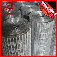 Buy cheap low price,high quality Black Welded Wire Mesh (Iso9001:20000) from wholesalers