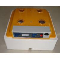 2012 Excellent Egg Incubator Manufactures