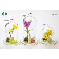 Customize Handblown Vintage Style Glass Dome Display for Decoration Manufactures