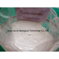 CAS 315-37-7 Testosterone Enanthate Injectable Steroids , Test Enan Androtardyl Testosterone Injections Steroids Manufactures