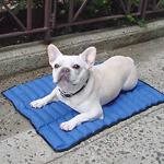Summer cool pad, gel cushion/cat cool pad Manufactures