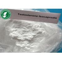 Testosterone Isocaproate Test I Raw Steroid Powders CAS15262-86-9 for Muscle Gain Manufactures