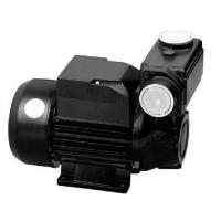 TPS  Series Domestic Water Pumps Precision Casting Motor Housing 1HP / 0.75KW Manufactures