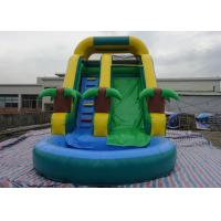 Amusement Inflatable Water Slide PVC Tarpaulin For Kids Fun Inflatable Water Park Manufactures
