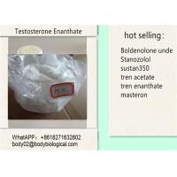CAS 315-37-7 Testosterone Anabolic Steroid Testosterone Enanthate / Test E for Muscle Building Manufactures