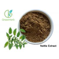 Phytosterols Stinging Nettle Root Extract / Standardized Herbal Extracts Food Grade Manufactures