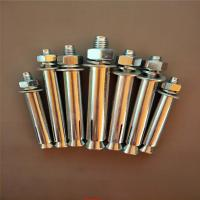 Industrial Stainless Steel Sleeve Anchor Bolts Easily Penetrate For Dry Environments Manufactures
