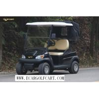 China Eco - Friendly Colorful 2 Seater Golf Cart , Battery Low Speed Electric Vehicles on sale