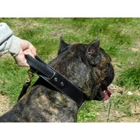 Dog spikes Leather Collar GCDC-054 Manufactures