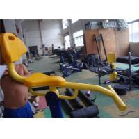 Quality Color Customized Outdoor Fitness Equipment For Schools Aluminum Alloy for sale