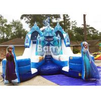 Customized Size Frozen Double Commercial Inflatable Slide Indoor And Outdoor For Kids Manufactures