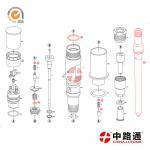 renault ejbr04101d delphi common rail injector&common rail diesel injector nozzle Manufactures
