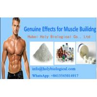 White Anabolic Steroid Powder Sex enhancer  Tadalafil to Treat ED in Males Manufactures