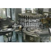 SSW-R10 Automatic Rotary Blow Molding Machine Manufactures
