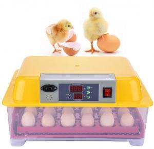 Plastic Commercial Egg Incubator , Egg Hatching Incubator High Low Temperature Alarm Manufactures