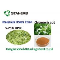 Natural Plant  Chlorogenic Acid Extract Anti Inflammatory 50-90%HPLC CAS 327 97 9 Manufactures