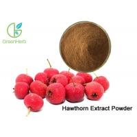 Hawthorn Berry Fruit Extract Powder Lowering Blood Pressure / Enhancing Immunity Manufactures