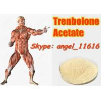 Buy cheap 10161-34-9 Tren Acetate Trenbolone Powder For Fitness / Muscle Building Steroids from wholesalers