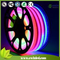 LED Flexible Neon Light Decoration Neon Tube Light Manufactures