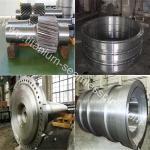 Titanium Flange for Pressure Vessels Manufactures