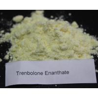 Muscle Gain Primobolan Trenbolone Steroid Methenolone Enanthate 303-42-4 Manufactures