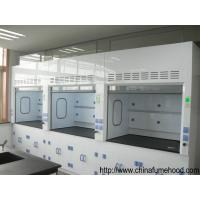 High Standard FRP Lab Fume Hood in Laboratory Furniture From China Lab Factory Manufactures
