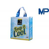 Fashion travel cooler bag , non woven fabrics shopping ice bag for packing Manufactures