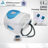 cryolipolysis lose weight machine  pecfect effect Manufactures