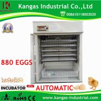 CE Marked 880 Egg Incubator KP-9 Fighting Cock Eggs Automatic Incubator Manufactures