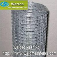 Welded Mesh,Welded Mesh Roll,Welded Mesh Panel,Welded Wire