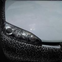 Chameleon Vinyl for Car Wrap, Change Colors at Different Angle Manufactures