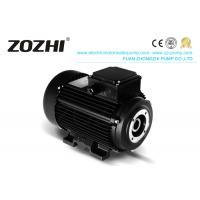 IE2 Hollow Shaft Hydraulic Motor HS90L3-4 2.6KW 3.5HP With Aluminum Housing Manufactures