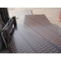 China 1220*2440mm and 1250*2500mm brown and black film faced plywood for construction & brown film faced plywood on sale