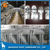 Spring Adjustable Cattle Headlock Barn for Ruminant Animals' Farm Manufactures