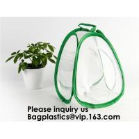 Agricultural Greenhouses for Tomato Planting,Pop-Up Tomato Plant Protector
