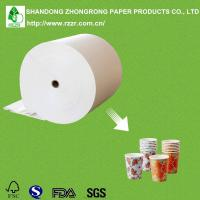 PE coated paperboard Manufactures