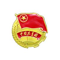 Attractive Graph Custom Metal Pin Badges Double Colors Plating ODM / OEM Welcomed Manufactures