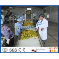 Complete Turn key Project Mango Fruit Juice Processing Line High Engery Saving Manufactures
