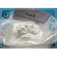 Testosterone Enanthate Bodybuilding Supplement Steroid Hormone Manufactures