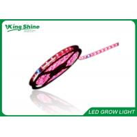 Red and Blue 72W Flexible Led Strip Grow Lights Hydroponic Plant Growth Lighting Manufactures